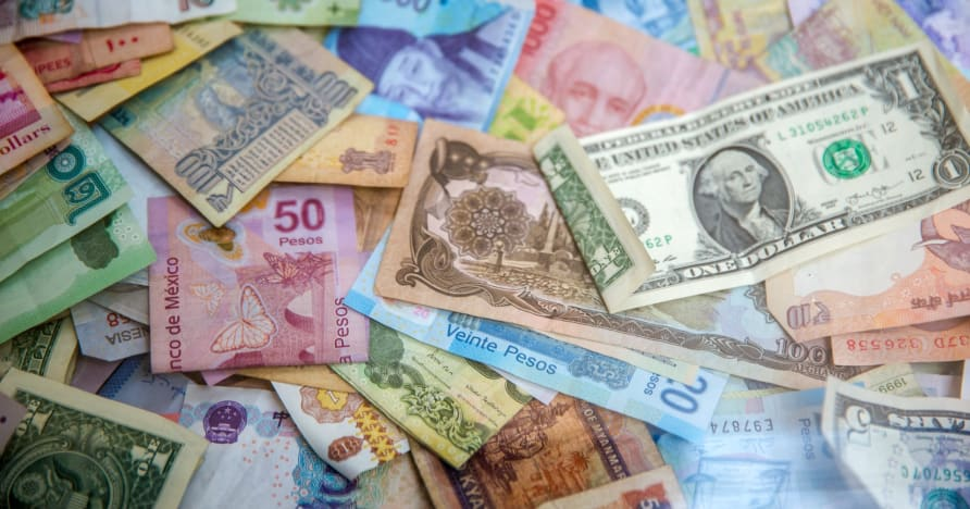 Руководство для новичков по бонусам и акциям мобильного казино