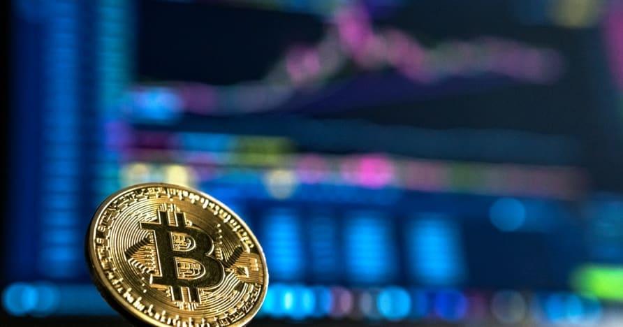 Руководство для начинающих по азартным играм с криптовалютой